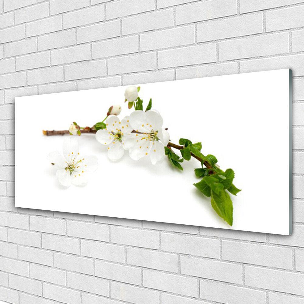 Tableau murale Impression sous verre 125x50 Nature Fleurs Branche