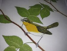 M R Bebb Yellow Breasted Chat 51/150 1975  Bird Etching Print