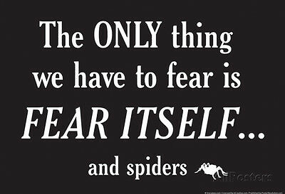Fear Spiders Poster Print by Snorg Tees, 19x13