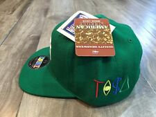 VINTAGE NY NEW YORK YANKEES TISA SNAPBACK RARE GREEN