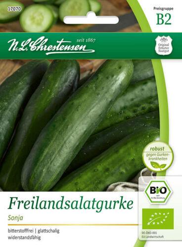 glattschalig Saatgut17070 Bio Freilandsalatgurke /'Sonja/'  bitterstofffrei