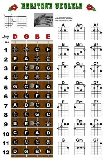 Baritone Ukulele Fretboard Chord Wall Chart Poster Uke Chords Dgbe