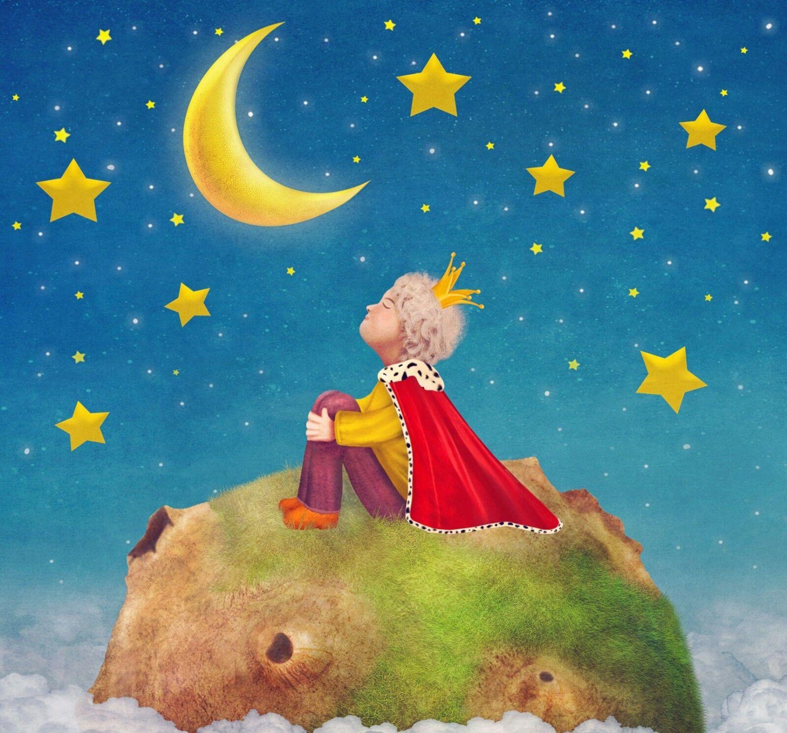 3D Prinz Mond Sterne 9083 Tapete Wandgemälde Tapeten Bild Bild Bild Familie DE Lemon | Qualität Produkt  |  79aef5