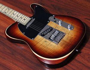 Details about Halo Guitars Salvus 6 String Electric Seymour Duncan Pickups  Evertune Bridge