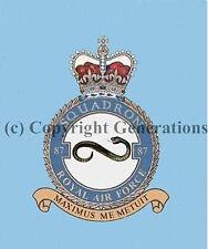 ROYAL AIR FORCE 87 SQUADRON  COASTER