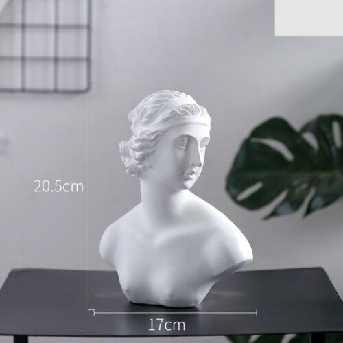 Famous Statue Retro Resin Head Skull Sculpture Venus Model King David Figurine