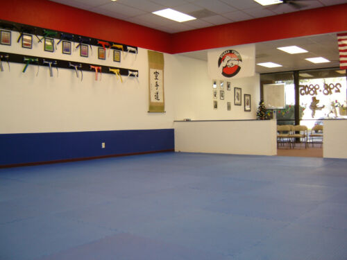 100 sqft martial arts foam mats reversible exercise red grappling puzzle tiles