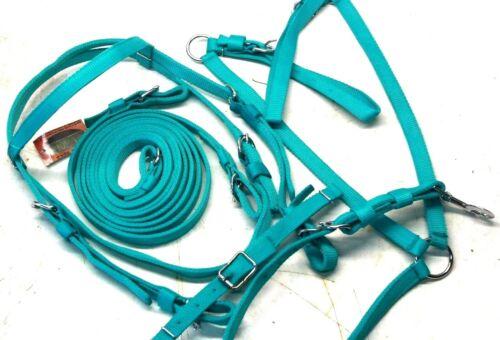 D.A Brand Teal Complete Nylon Bridle Set w// Breast Collar Horse Size DA4225