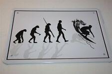 EVOLUTION - SURFEN SURFER WELLENREITEN   - Blechschild 21x15 cm 0107 Wandschild