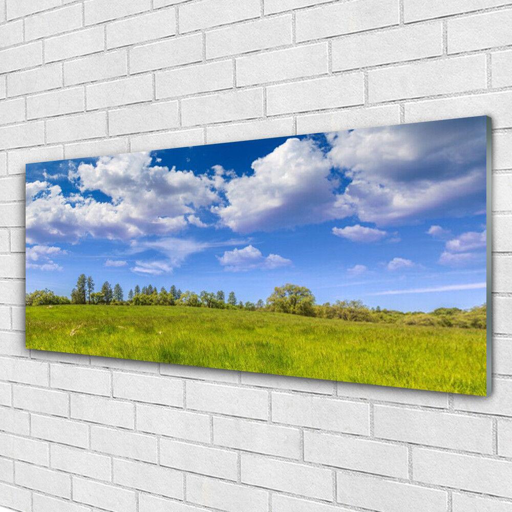 Acrylglasbilder Wandbilder aus Plexiglas® 125x50 Wiese Gras Landschaft