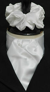 Ready-Tied-Brilliant-White-Faux-Silk-Satin-Dressage-Riding-Stock-amp-Scrunchie