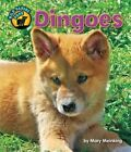 Dingoes by Mary Meinking (Hardback, 2014)