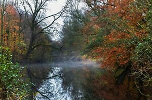 AUTUMN-WOODLAND-FOREST-TREES-LAKE-CANVAS-PICTURE-POSTER-PRINT-UNFRAMED-1095