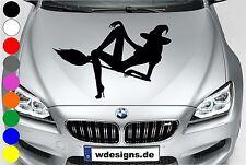 WD Autoaufkleber SEXY HEXY HEXE Aufkleber Motorhaube Sticker Heckscheibe Decal