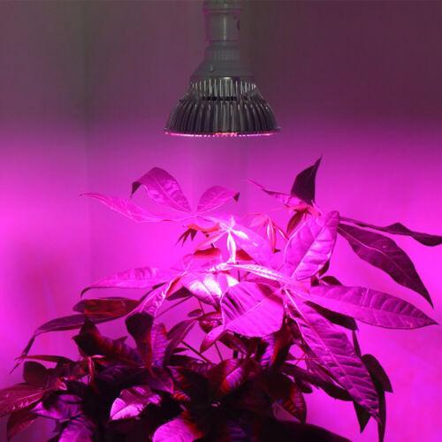 8-80W Full Spectrum E27 E26 LED Grow Light Bulb Lamp for Veg Bloom Indoor Plant