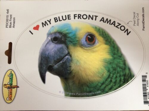 Amazon Parrot Exotic Bird Decal Bumper Sticker Blue Front Turquoise