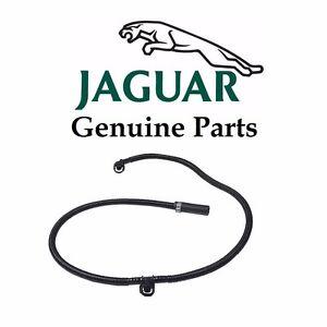 Engine Crankcase Breather Hose Genuine For Jaguar Vanden Plas XJ8 XJR XK8 XKR