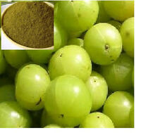 2 X 3.5 Oz Amla Powder Natural And Pure Used For Making Hairs Strong