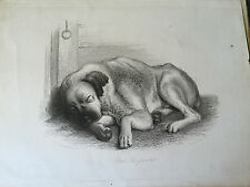 1862 - Rab and His Friends.  John Brown -  dogs, Edinburgh.