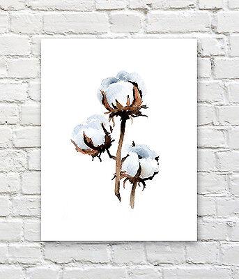 "Cotton Art Print Watercolor 11/"" x 14/"" by Artist DJR"