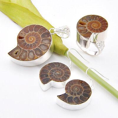 100% Genuine Natural Ammonite Fossil Gems Silver Pendant Earrings Ring Sz 7 8 9