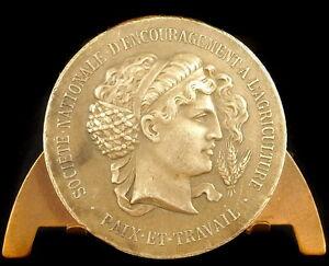 Medaglia-L-Agricoltura-Pace-e-Lavoro-a-Lambert-e-Maglia-Maggio-1923-41-mm-Medal