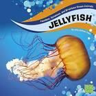 Jellyfish by Jody S Rake (Hardback, 2016)
