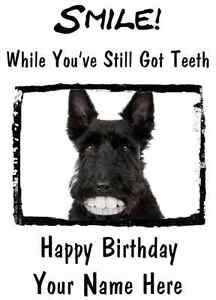 Scottish terrier pdste4 smile teeth a5 personalised happy birthday image is loading scottish terrier pdste4 smile teeth a5 personalised happy m4hsunfo