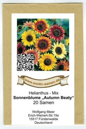 Helianthus-GIRASOLE-Autumn Beauty-Miscela semi 20