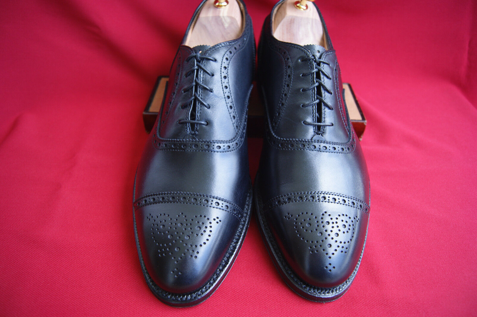Alden US Gr. 11 D  Medallion Tip Bal   Oxford Business Schuh TOP  + Schuhspanner