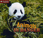 Animals in Danger by Anne Faundez (Paperback, 2005)