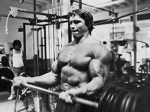 "37 Arnold Schwarzenegger Bodybuilder Mr Olympia Universe 14/""x16/"" Poster"