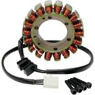 Ricks Motorsport Electric - 21-219+ - Stator