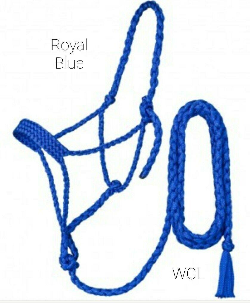 1 Spool Lead Rope Halter 880 lbs Tensile MFPP 3//8 x 500 Blue /& White - CWC-115320 Braided