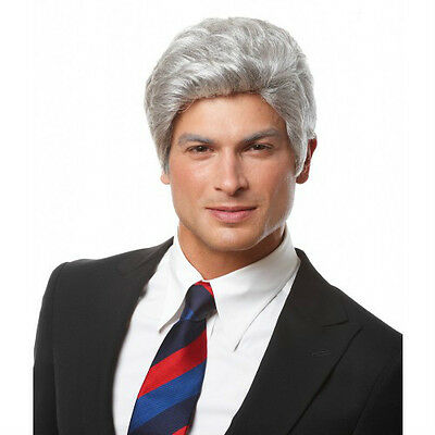 ADULT MENS MR PRESIDENT SHORT WAVY GREY GRAY MALE COSTUME WIG