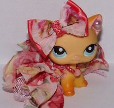 Littlest pet shop clothes and accessories Custom lot *LPS Pets NOT INCLUDED*