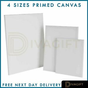 Blank-Artist-Canvas-Art-Board-Plain-Painting-Stretched-Framed-White-Large-Small