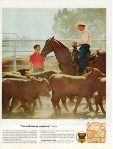 Vintage-advertising-print-Gas-Oil-Ethyl-Corp-Cattle-Ranch-Central-Arkansas-horse