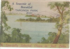 FOLD OUT VIEWS OF TARONGA PARK ZOO SYDNEY NSW POSTCARD