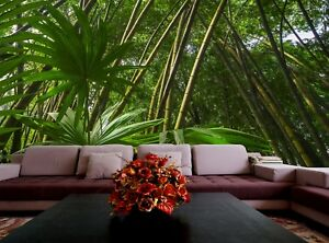 Details About Asian Tropical Forest Photo Wallpaper Wall Mural Decor Paper Poster Free Paste