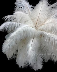 """10 Pieces 17-19/"""" Golden Yellow Ostrich Drab Wing Feathers Centerpiece Costume"""