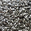 10 LBS Metal Polishing Wet Tumbler Pins Chips Stainless Steel Cleaning Media