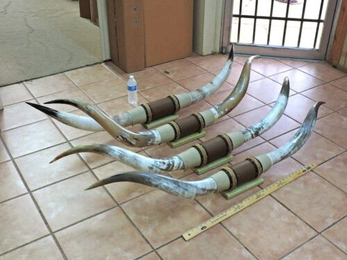 "5/' 6/"" TIP TO TIP MOUNTED STEER HORNS 5/' 1 SET COW BULL HORNS LONGHORNS"