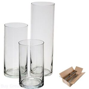 Glass Cylinder Vases Set Of 3 Decorative Centerpieces For Home Or