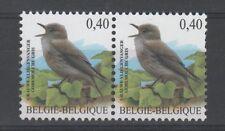 OBP 3265 Buzin - Grauwe Vliegenvanger - Blok van 2 - horizontaal.