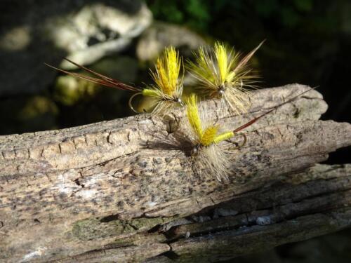MAYFLY ADULT Maifliege # 10 Bachforelle Regenbogenforelle Döbel Forelle 4 St