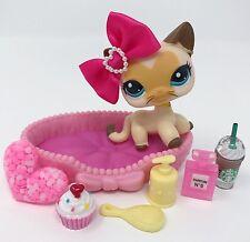 Littlest Pet Shop LPS Lot Siamese Cat #3573 Heart Face Blue Eye Accessories RARE