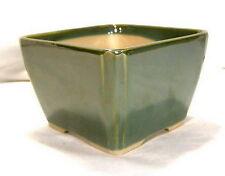 Bonsai Schalen Kaskade Mame 687 _5 Ficus Anzuchtschale 9x9x6 cm