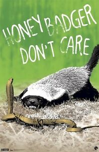 Details about ANIMAL POSTER ~ HONEY BADGER DON'T CARE 22x34 FREE FAST  SHIPPING Ratel Randall