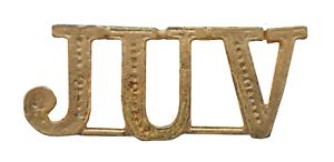 JUV Juvenile Gilded Abbreviation For Orange Order Collarette